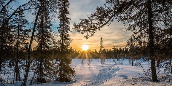 Pallas in Finnland